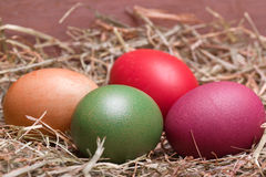 Kleurrijke pastelkleurpaaseieren Stock Foto