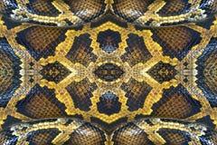 Kleurrijke patronen van boahuid Royalty-vrije Stock Foto