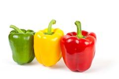 Kleurrijke peper Royalty-vrije Stock Afbeelding
