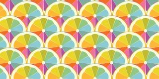 Kleurrijke plak van sinaasappel of citroen stock foto's