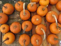 Kleurrijke pompoeneninzameling op de de herfstmarkt Royalty-vrije Stock Afbeeldingen