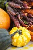 Kleurrijke purpere, oranje en gele wortelen en pompoenvertoning van Stock Afbeelding