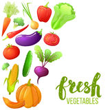 Kleurrijke reeks groenten Stock Fotografie