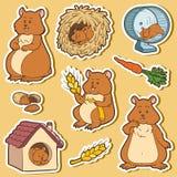 Kleurrijke reeks leuke hamsters en voorwerpen, stickers Stock Afbeelding