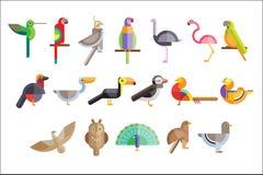 Kleurrijke reeks verschillende vogels Pelikaan, uil, toekan, adelaar, pauw, papegaai, valk, flamingo, duif, fazant wild stock illustratie