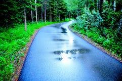 Kleurrijke regenachtige weg Stock Foto's