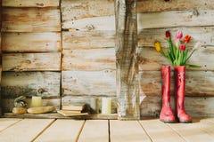 Kleurrijke regenlaarzen met de lentebloemen, kaarsen, stenen en boe-geroep Royalty-vrije Stock Fotografie