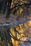 Kleurrijke riverbank royalty-vrije stock foto's