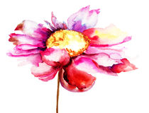 Kleurrijke rode bloem Stock Afbeeldingen