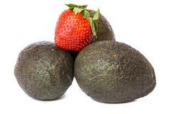 Kleurrijke rode en heerlijke aardbei op hoogste avocado's met witte achtergrond Royalty-vrije Stock Foto's
