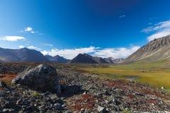 Kleurrijke rotsachtige toendra voor riviervallei Stock Foto's
