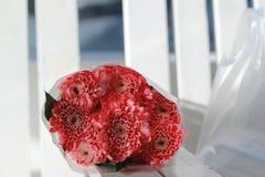 Kleurrijke roze nam bloemenboeket is een combinatie rust op whi toe Stock Afbeelding