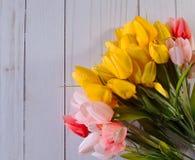 Kleurrijke roze, rode en gele tulpen met een witte achtergrond Royalty-vrije Stock Foto's