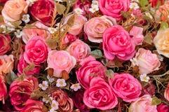 Kleurrijke roze rozen Stock Fotografie