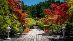 Kleurrijke rustige aard in Koyasan, Japan Stock Foto's