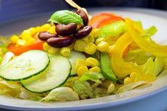 Kleurrijke salade Stock Foto's