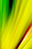 Kleurrijke Samenvatting Stock Afbeeldingen