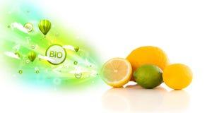 Kleurrijke sappige vruchten met groene ecotekens en pictogrammen Royalty-vrije Stock Foto's
