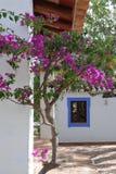 Kleurrijke scène in Portugal stock afbeelding