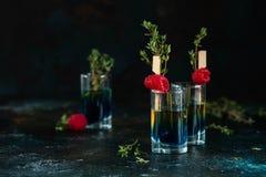 Kleurrijke schoten op een donkere achtergrond Cocktails in de bar met frambozen en thyme royalty-vrije stock afbeelding