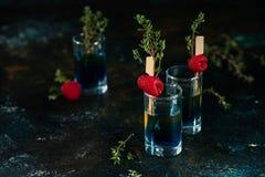 Kleurrijke schoten op een donkere achtergrond Cocktails in de bar met frambozen en thyme royalty-vrije stock afbeeldingen