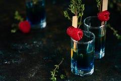 Kleurrijke schoten op een donkere achtergrond Cocktails in de bar met frambozen en thyme royalty-vrije stock foto