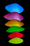 Kleurrijke shells Stock Fotografie