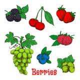 Kleurrijke smakelijke vruchten en bessenschetsen Stock Foto