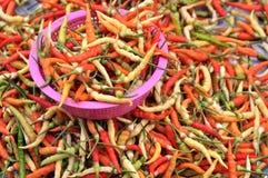 Kleurrijke Spaanse peper Stock Foto