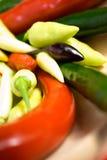 Kleurrijke Spaanse peper - diversiteit Stock Afbeelding