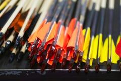 Kleurrijke sportpijlen op een rij Royalty-vrije Stock Foto