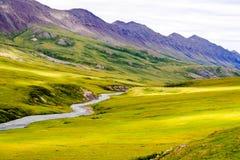 Kleurrijke stroom en vallei Van Alaska Stock Fotografie