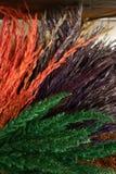 Kleurrijke tarwedecoratie Stock Afbeelding