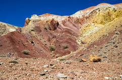 Kleurrijke terra Stock Afbeelding