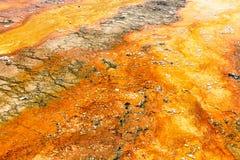 Kleurrijke texturen op het Nationale Park van Yellowstone Stock Foto's