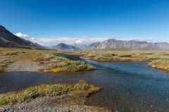 Kleurrijke toendra voor de rivier en Stock Foto's