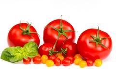 Kleurrijke tomaten op witte achtergrond Royalty-vrije Stock Afbeeldingen