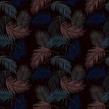 Kleurrijke tropische bladeren op het donkere naadloze patroon van de de zomernacht, vectorillustratie stock illustratie