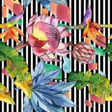 Kleurrijke tropische installaties Bloemen botanische bloem Naadloos patroon als achtergrond stock illustratie