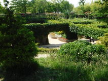 Kleurrijke tuin Royalty-vrije Stock Afbeelding