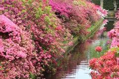 Kleurrijke tuin met een kreek en standbeeld op de achtergrond Royalty-vrije Stock Fotografie