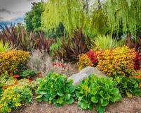 Kleurrijke tuin op een bewolkte dag Stock Fotografie