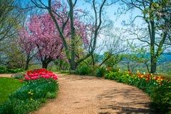 Kleurrijke Tuinweg Stock Afbeelding