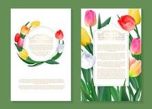 Kleurrijke tulpen op twee verticale lege geplaatste banners Vector illustratie stock illustratie