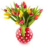 Kleurrijke tulpen in rode vaas Royalty-vrije Stock Foto