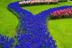 Kleurrijke tulpenbloemen in de lentepark Bloemlandschap Stock Foto