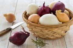Kleurrijke uien in een mand met een mes Royalty-vrije Stock Foto