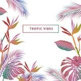 Kleurrijke vectorsamenstelling van het tropische strand van de bladerenkleur wallp Royalty-vrije Stock Afbeeldingen