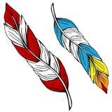 Kleurrijke veren Royalty-vrije Stock Fotografie