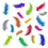 Kleurrijke veren Royalty-vrije Stock Foto's